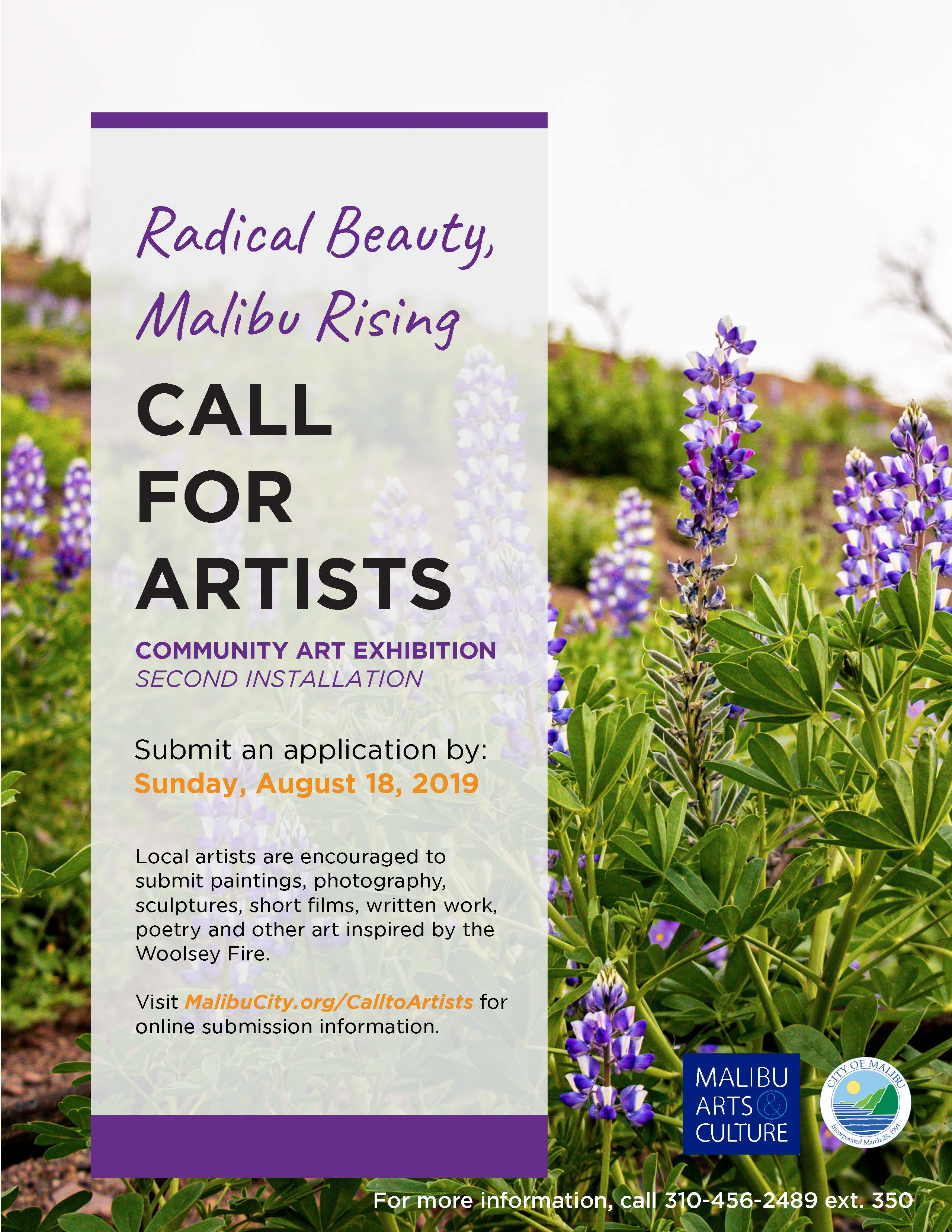 2019 Call For Artists Radical Beauty Second Installation