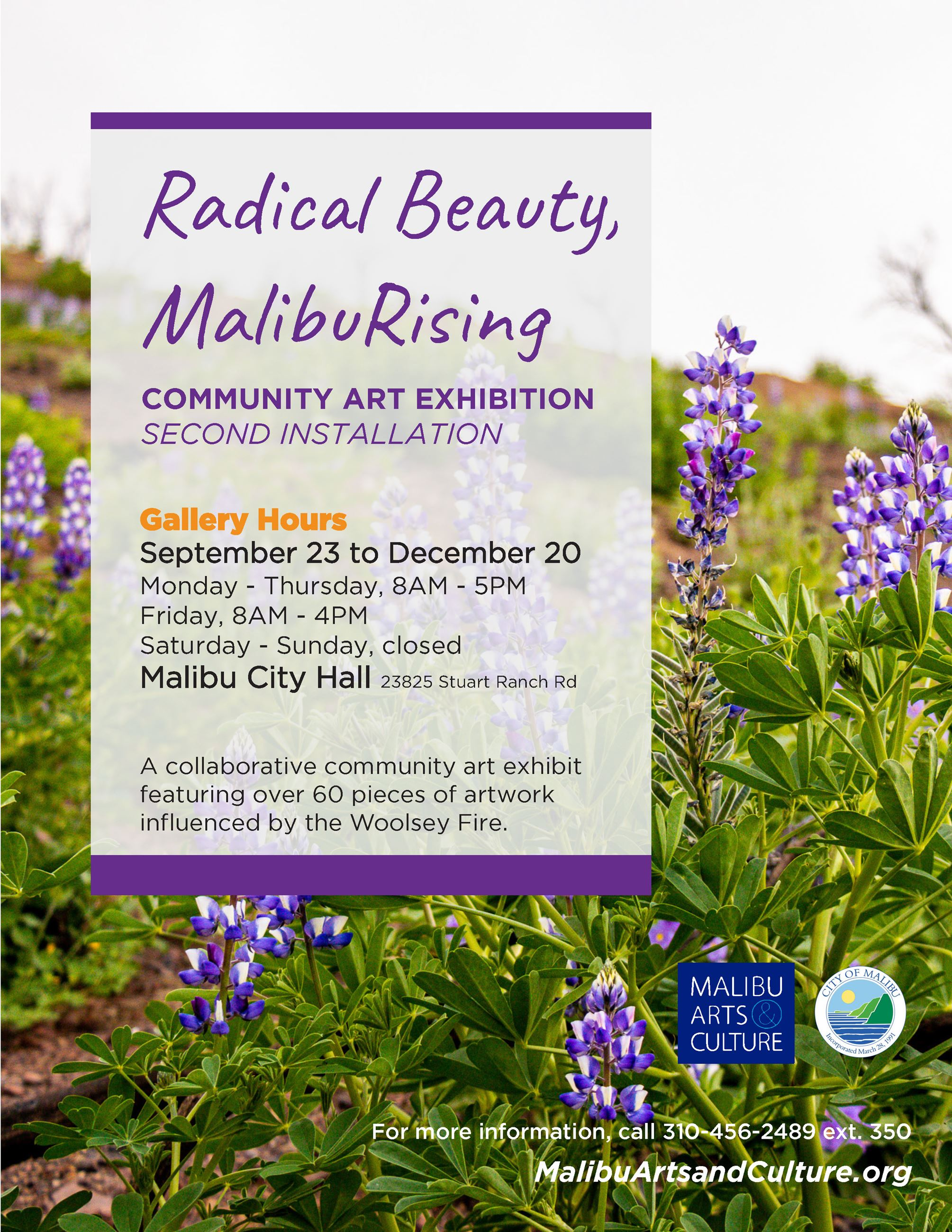 Radical Beauty Reception Flyer